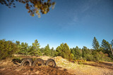 Truck tyres and forest environment with stars at night - 212627703
