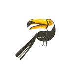 Hand drawn vector abstract cartoon summer time graphic decoration illustrations art with exotic tropical rainforest toucan bird isolated on white background - 212633947