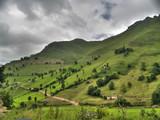 Verde ladera de los Valles Pasiegos en Cantabria.con la cumbre con nubes. - 212655184