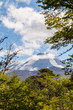 Volcán Llaima, Parque Nacional Conguillio