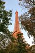 Eiffel tower behind trees