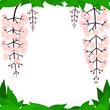 植物 花 フレーム 枠 壁紙 素材 - 212700914