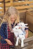 high angle view of kid hugging goats at farm - 212709535