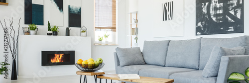 Abstract paintings on a white wall of a modern living room interior with a large, comfortable, gray sofa and a stylish, bio fireplace - 212717368