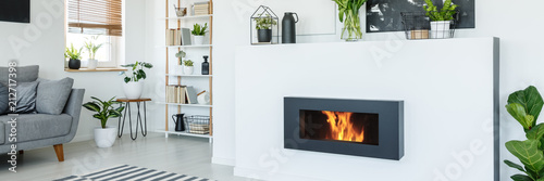 A stylish, lit bio fireplace in a living room interior of a modern, monochromatic apartment with white walls, wooden furniture and plants © Photographee.eu