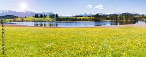 Leinwanddruck Bild Frühling im Allgäu bei Füssen