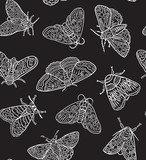 White contour butterflies and moths isolated on black background. Vector surface design - 212735902