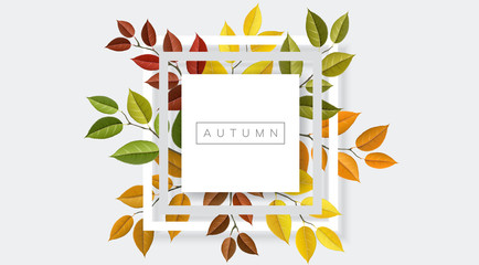 Autumn nature geometric frame with branches and leaf. Vector illustration for fall nature design and background