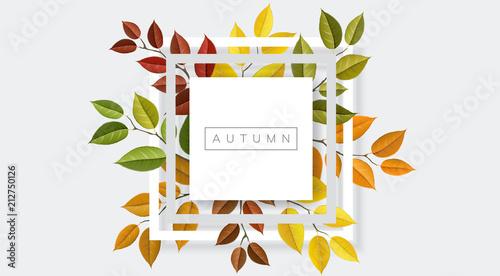 Jesieni natury geometryczna rama z gałąź i liściem. Wektorowa ilustracja dla spadek natury projekta i tła