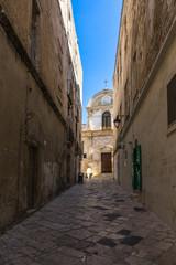 Scenic narrow alley in Monopoli old town, Apulia, Italy © Francesco Bonino