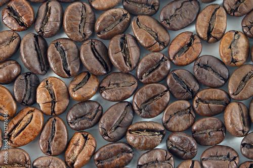 Aluminium Koffiebonen coffee beans on white background