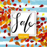 Sale autumn poster with red and yellow falling leaves on background. Advertisement banner with hand drawn elements. Colorful template. - 212777904