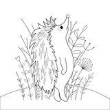 children s coloring book with cartoon animals. Educational tasks for preschool children cute hedgehog