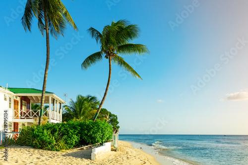 Beachfront życia na tropikalnej wyspie Barbados
