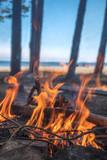 A bonfire burns in a camping i - 212809744