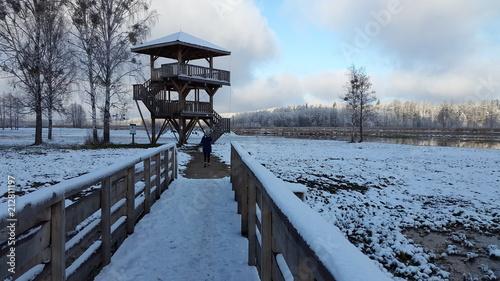 Aluminium Grijze traf. Wieża widokowa zimą na rozlewiskach w okolicach Białowieży w Polsce