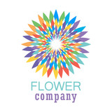 Colorful flower logo, symbol, vector illustration. - 212819996