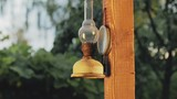 Close-up of kerosene lamp that hangs on the support of the terrace - 212828978