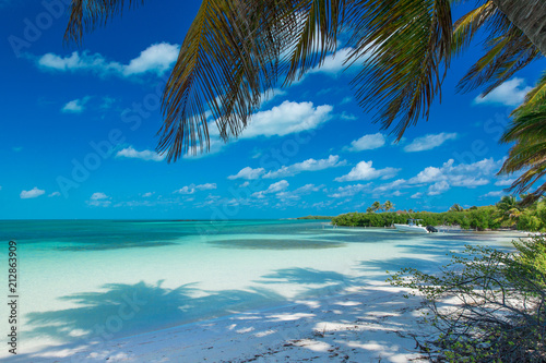 beach and tropical sea - 212863909