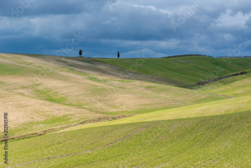 Poster Green rolling hills near San Quirico d'Orcia, Tuscany, Italy