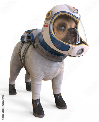 Fototapeta Dog in an astronaut's space suit. 3D illustration isolated on white.