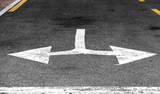 Only turns left or right. White double arrow - 212887397