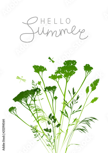 Summer background with green herbal silhouettes