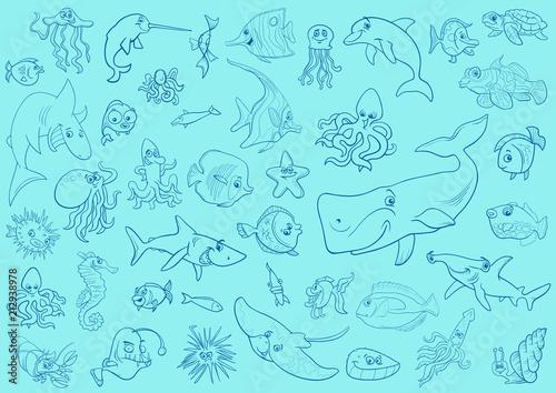 Fototapeta sea life animals background pattern