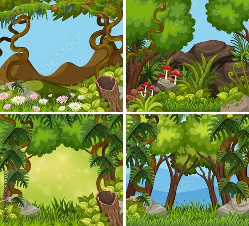 Fototapeta A set of jungle