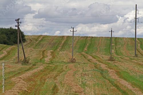 Electricity transmission lines standing in a farm field