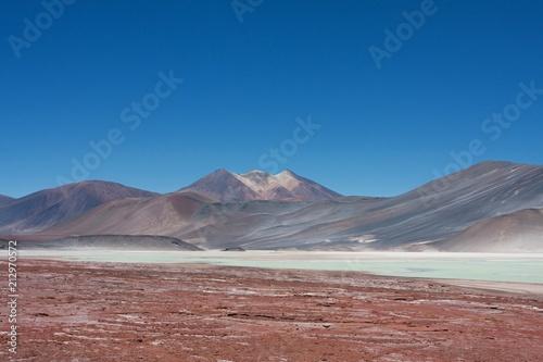 Canvas Cappuccino Lagunas de San Pedro de Atacama