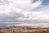 Chile Laguna Tebinquiche  Salt lake and clouds - 213001315