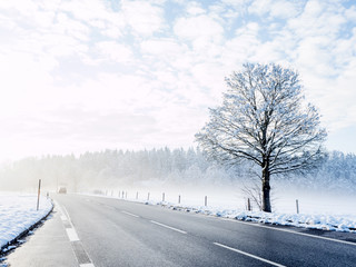 Road in winter, fog, Upper Bavaria, Bavaria, Germany, Europe