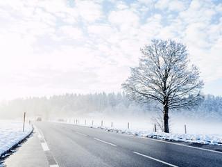 Road in winter, fog, Upper Bavaria, Bavaria, Germany, Europe