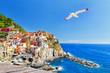 Leinwanddruck Bild - Manarola, Italy, National Park Cinque Terre, UNESCO world heritage list. Seagull soar over  gorgeous panorama of coastal village Manarola. Idyllic picturesque scenery, vacation background. Landmark.