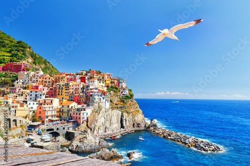 Leinwanddruck Bild Manarola, Italy, National Park Cinque Terre, UNESCO world heritage list. Seagull soar over  gorgeous panorama of coastal village Manarola. Idyllic picturesque scenery, vacation background. Landmark.