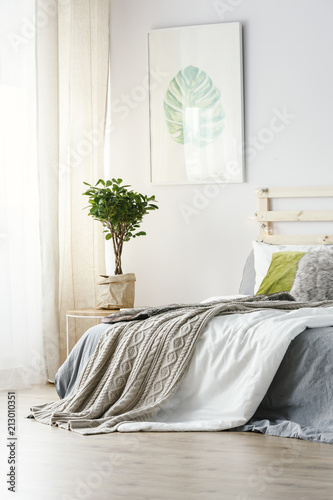 Leinwanddruck Bild Poster above plant next to bed with grey blanket in minimal bedroom interior. Real photo