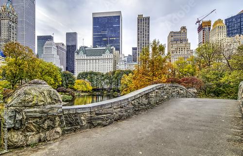 Foto Murales Gapstow bridge Central Park, New York City