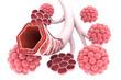 Alveoli in lungs 3d illustration