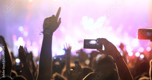People enjoy concert at festival - 213067534