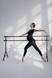 Young beautiful pregnant ballerina is posing in studio - 213071937