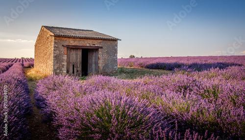 Canvas Lavendel Cabanon à Valensole