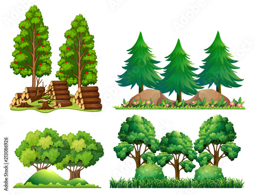 A Set of Forest Landscape © GraphicsRF