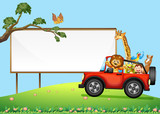 A Sign Board and Wild Animals - 213089580
