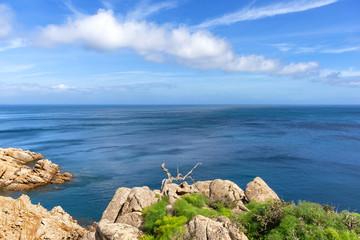 Sardegna, isola di Caprera  © Alessio Orrù