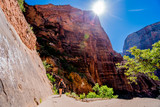 A woman hikes up a trail to Angel's Landing in Zion Utah - 213093502