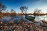 Early spring landscape with wooden boat - 213096197