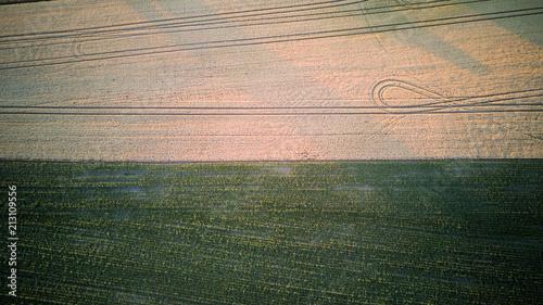 Felder bei Sonnenuntergang von oben. - 213109556