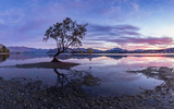 That Wanaka Tree. Probably the most photographed and famous tree in southern hemisphere.  Curved tree in the lake with amazing mountain range in the background.