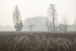Leinwanddruck Bild - Winterliche Landschaft im Münsterland